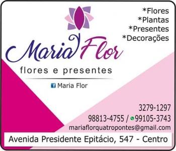 MARIA FLOR FLORICULTURA E PRESENTES