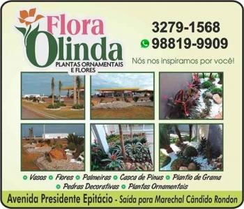 FLORA OLINDA FLORICULTURA JARDINAGEM