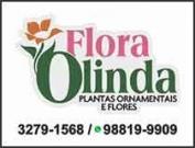 1374a - Floricultura Flora Olinda Plantas e Flores