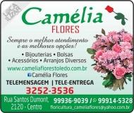 CAMÉLIA FLORES FLORICULTURA
