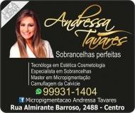ANDRESSA TAVARES MICRO PIGMENTAÇÃO