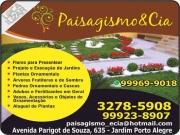 Cartão: PAISAGISMO & CIA FLORICULTURA