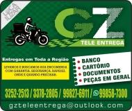 GZ TELE-ENTREGA