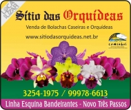 SÍTIO DAS ORQUÍDEAS ORQUIDÁRIO / FLORICULTURA