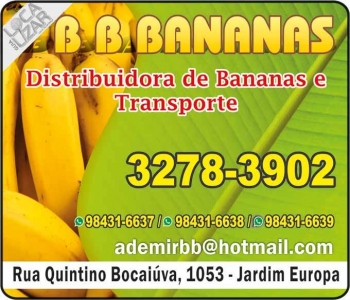 BB BANANAS DISTRIBUIDORA E TRANSPORTES