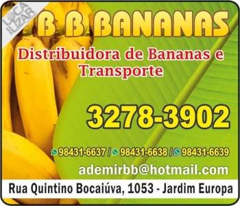 BB BANANAS DISTRIBUIDORA E TRANSPORTES