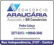 ARAÚCARIA CONSÓRCIO  - PEDRO CALAÇA
