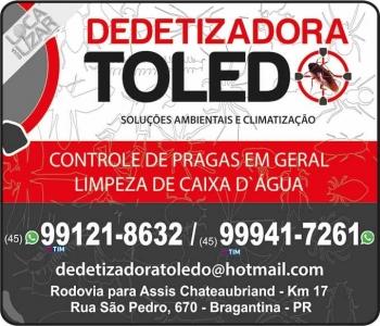 TOLEDO DEDETIZADORA / SOLUÇÕES AMBIENTAIS