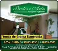 BROTOS E ARTES GARDEN FLORICULTURA / JARDINAGEM / PAISAGISMO EM TOLEDO PR