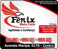 FÊNIX MOTOFRETE / TELE-ENTREGA