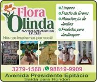 FLORA OLINDA FLORICULTURA E JARDINAGEM / PAISAGISMO